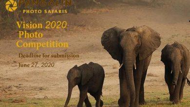 انتشار فراخوان مسابقه عکس Vision 2020 لینک : https://ardabilvas.ir/?p=5539 👇 سایت : ardabilvas.ir اینستاگرام : instagram.com/ArdabilVAS کانال : t.me/ArdabilVAS 👆